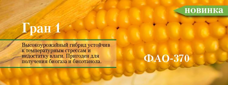 http://ru.vnis.com.ua/catalog/seeds-of-cereals/corn/C35BA5B6-08F0-076F-45BE-94C150100ECC/