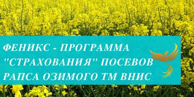 Осенние обработки озимого рапса — залог будущего урожая! | 200x400